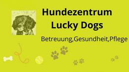 Hundezentrum Lucky Dogs